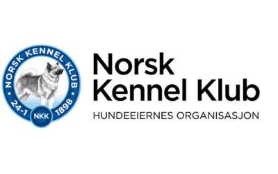 Tiltak i redningsaksjon for NKK