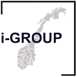 i-group logo