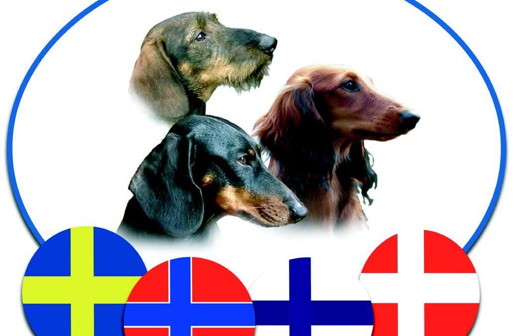Nordisk vinnerutstilling 2021